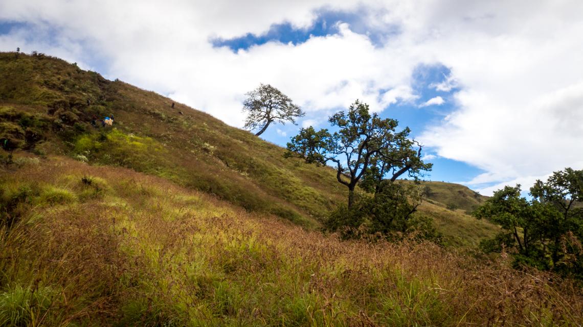 Mt Rinjani Trek